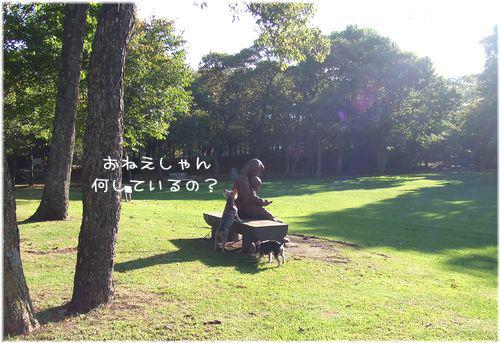 061003-tokoya11.jpg