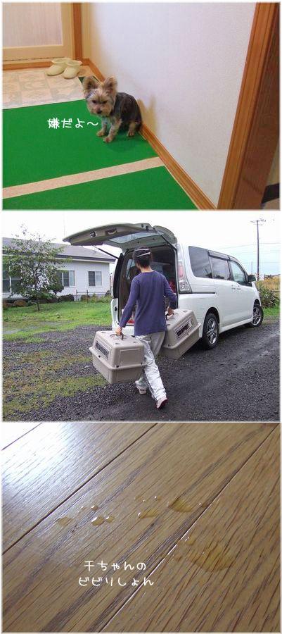 061003-tokoya123.jpg