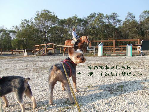 061004-bokujyou1.jpg