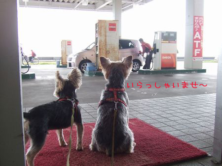 061012-naganuma1.jpg
