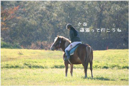 061026-bokujyou5.jpg