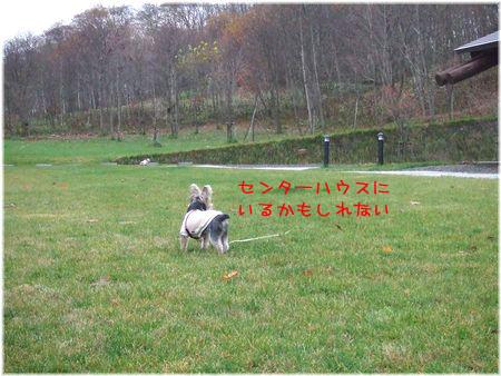 061111-baibai4.jpg