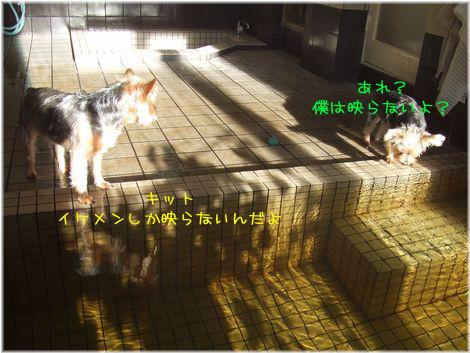 061115-ofuro4.jpg