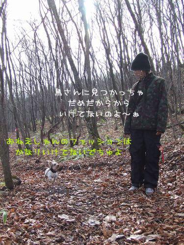 061120-haginosato2.jpg