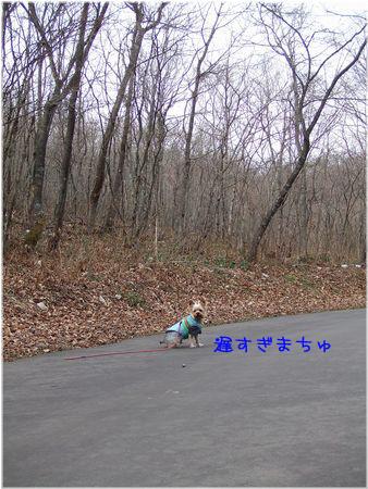 061128-osoi2.jpg