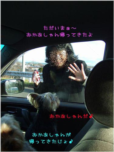 061129-titose-go7.jpg