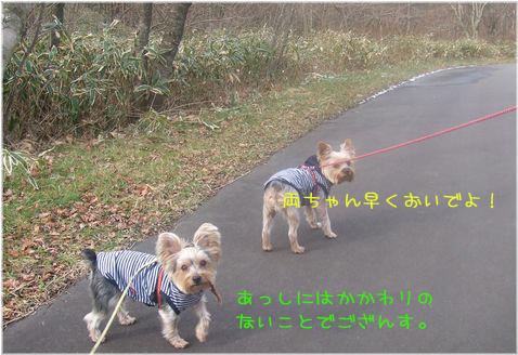 061202-haginosato1.jpg