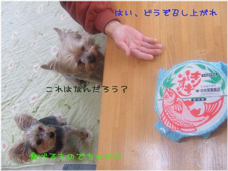 061202-omiyage1.jpg