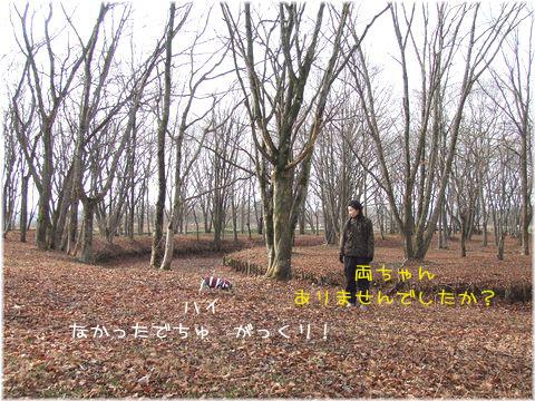061213-jinya2.jpg