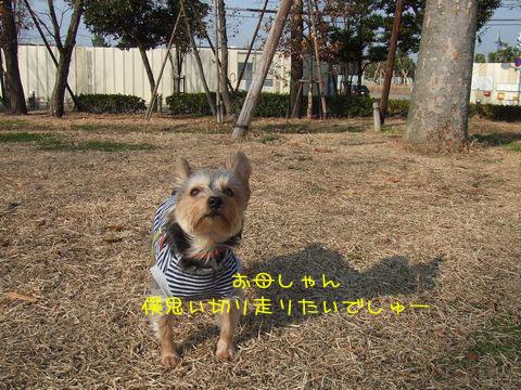 061228-park1.jpg