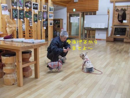 070106-haginosato2.jpg