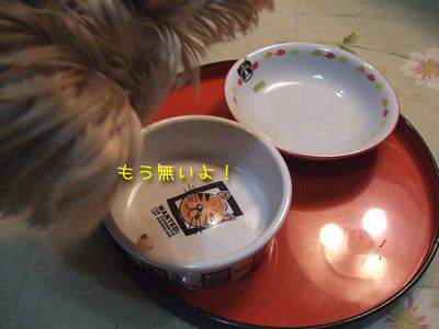 070107-nanakusa4.jpg