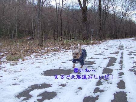 070113-haginosato1.jpg