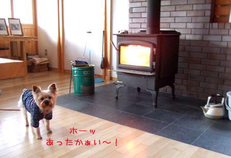 070113-haginosato3.jpg