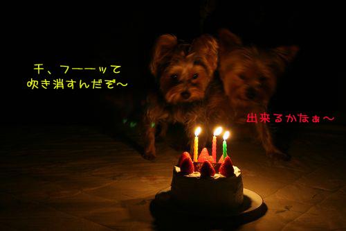 070115-birthday6-k.jpg