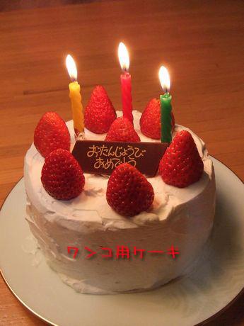 070115-birthday8.jpg