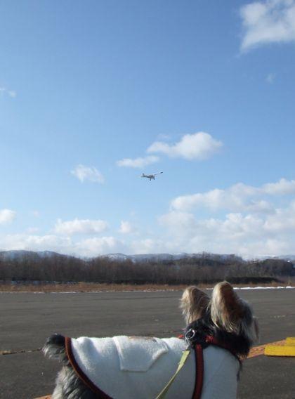 070120-air-plane1.jpg