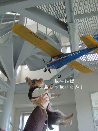 070120-air-plane2.jpg
