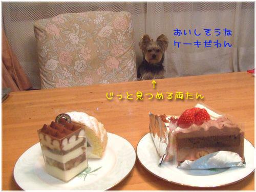 070122-syuuri3.jpg