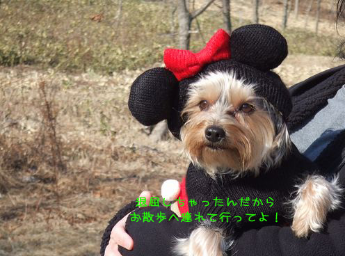 070126-wasi5.jpg