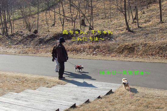 070126-wasi8.jpg