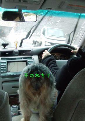 070129-car2.jpg