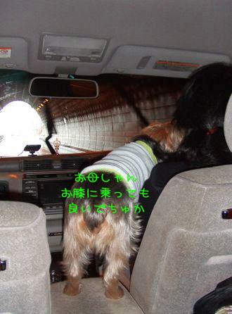 070129-car3.jpg