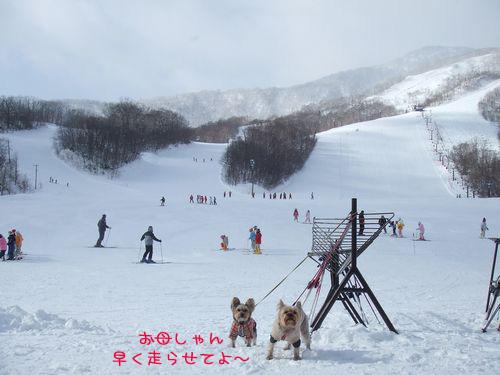070205-ski1.jpg