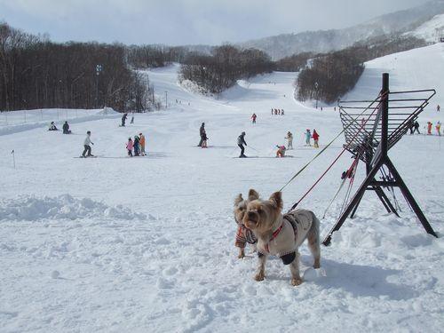 070205-ski2.jpg