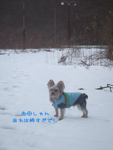 070207-sanpo1.jpg
