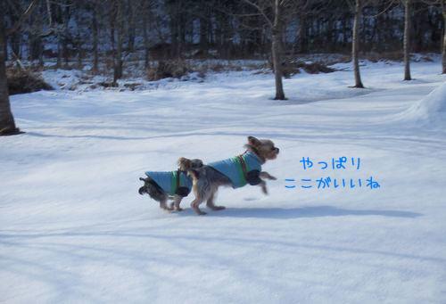 070207-sanpo4.jpg