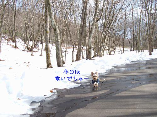070208-bokujyou5.jpg