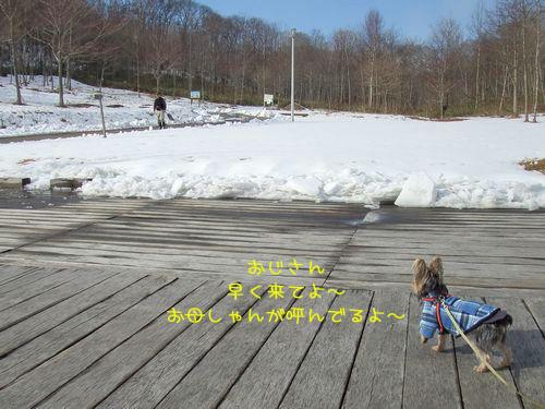 070208-bokujyou9.jpg