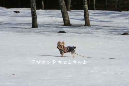 070209-jinya4.jpg