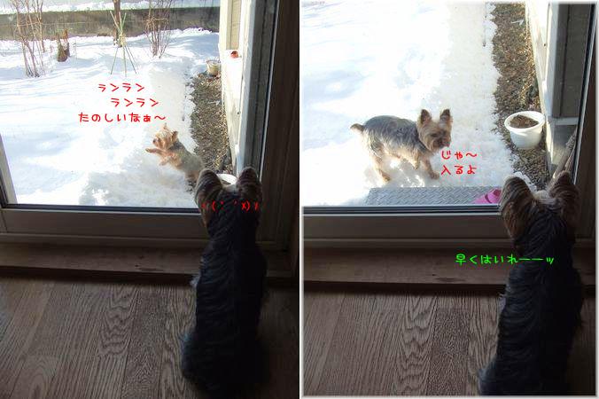 070212-niwa12.jpg