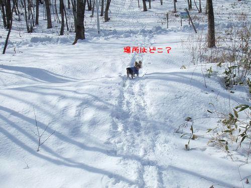 070212-yama4.jpg