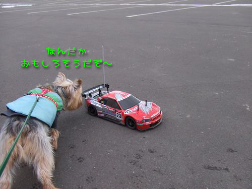 070217-haginosato5.jpg