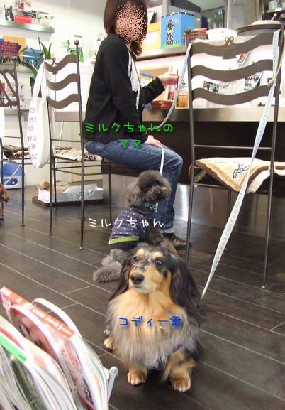 070227-cafe1.jpg