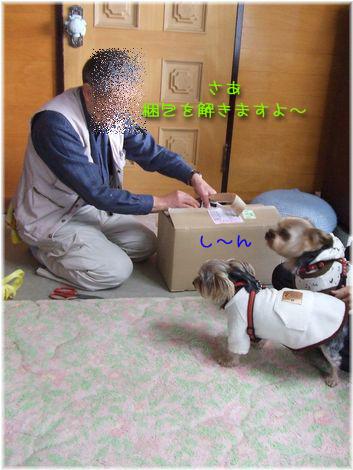 070316-hareji2.jpg