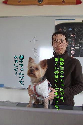 070324-hikouki6-k.jpg