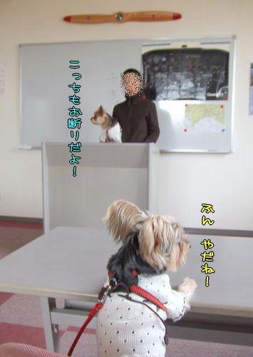 070324-hikouki8-k.jpg
