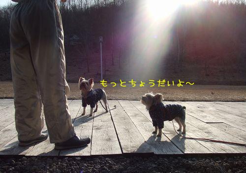 070325-haginosato7.jpg