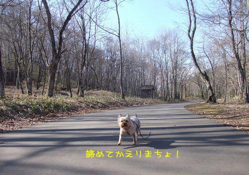 070326-haginosato5.jpg