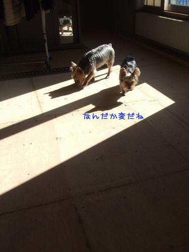 070405-tatami2.jpg