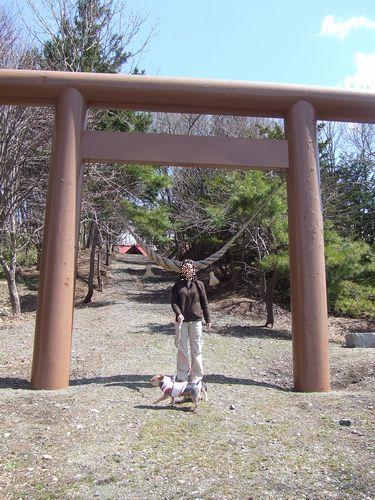 070427-miyajimanuma1.jpg