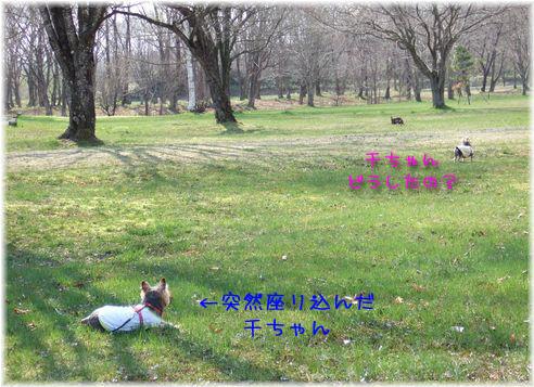 070507-suruban9.jpg