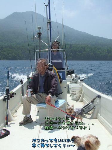 070627-sikotuko12.jpg