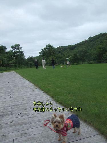 070714-haginosato4.jpg