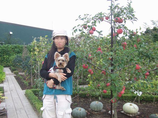 070923-suzuran-park17.jpg