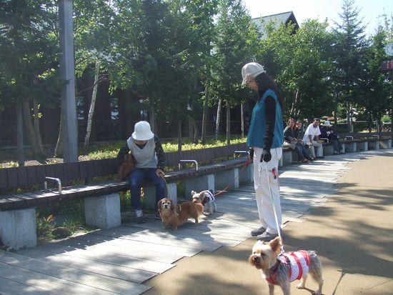 070923-suzuran-park3.jpg